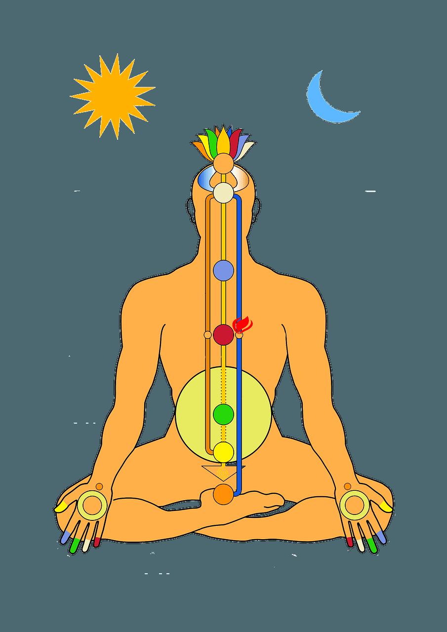 The human energy system (Pixabay)